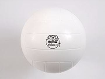 Afbeelding van Educatieve volleyball