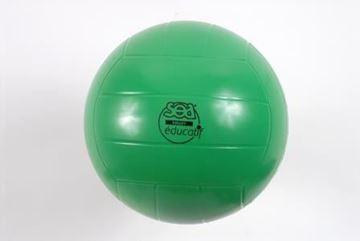 Afbeelding van volleybal - edu - SEA - groen