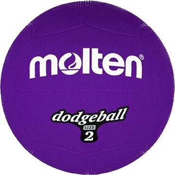 Afbeelding van Molten Dodgebal, ø200mm, 310g, violet