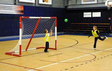 Afbeelding van doel mini-handball - per stuk