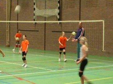 Afbeelding van volleybalnet - topcomp - 9,5x1m - PE 4mm