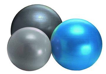 Afbeelding van Gymball SPORTI 75cm- 1300gr - donkergrijs
