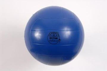 Afbeelding van volleybal - edu - SEA - blauw
